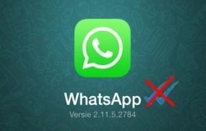 282514-400-629-1-100-whatsapp-come-togliere-le-doppie-spunte-blu